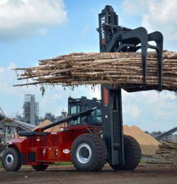 Xe nâng kẹp gỗ